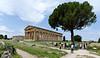 Temples of Hera (background) and Poseiden, Paestum Italy