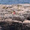Polignano a Mare, some time alone