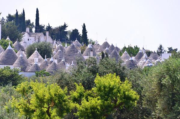 Alberobello, trulli domes among the olive trees