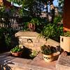Aria Fina Agriturismo:  herb garden
