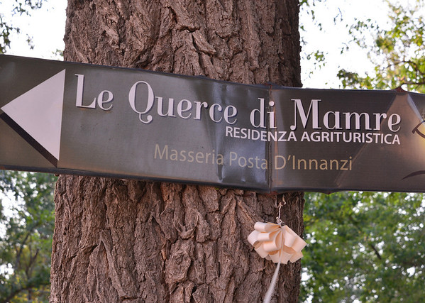 Le Querce di Mamre Agriturismo: entrance sign with ribbon probably signifying an upcomming wedding