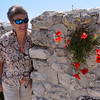 Monte Sant'Angelo:  poppys growing out of the castle's wall