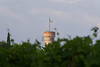 Borgo San Donino; view of tower