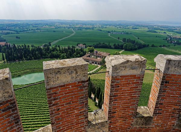 Tower of San Martino della Battaglia; vinyards and villas from the top