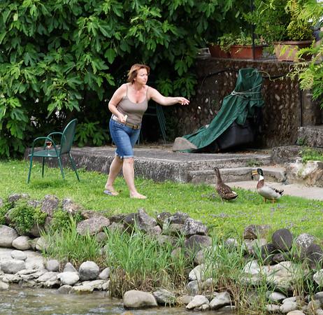 Valeggio and the Mincio river; feeding the ducks