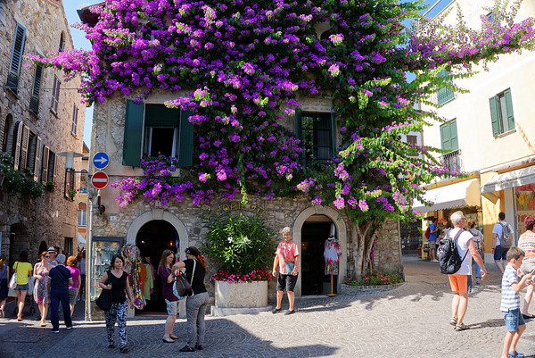 Sirmione; magnificent Suzanne and bougainvilla
