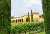 Soave; Monte Tondo winery