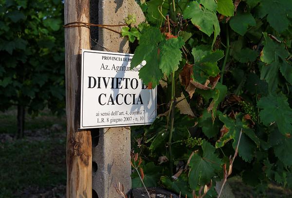 Borgo San Donino; hunting