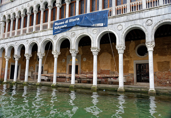 Venice; Natural History Museum