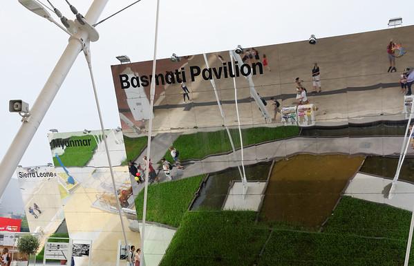 Expo Milano 2015:  Basmati rice fields
