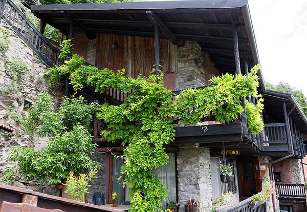 La Sognata, wisteria vines