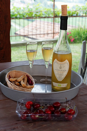 Mondo Antico, we were playing cards and Giuliana brought out snacks and some of her own Chardonnay, no sulfites in any of their wines, also not clarified