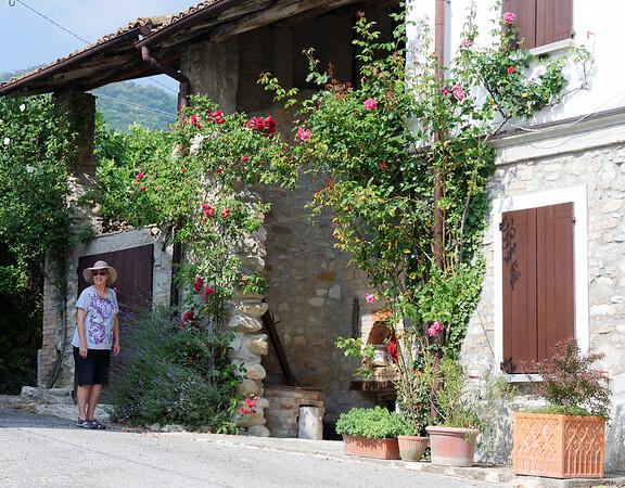 Mondo Antico, Gaminara, Suzanne and roses