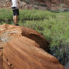 Frank scouts out the hike at Llewellyn Gulch to see the petroglyphs.