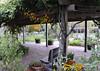 Jordan Pond House, drive through Acadia National Park, ME