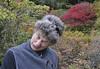 #2, Asticou Azalea Garden, Northeast Harbor, ME