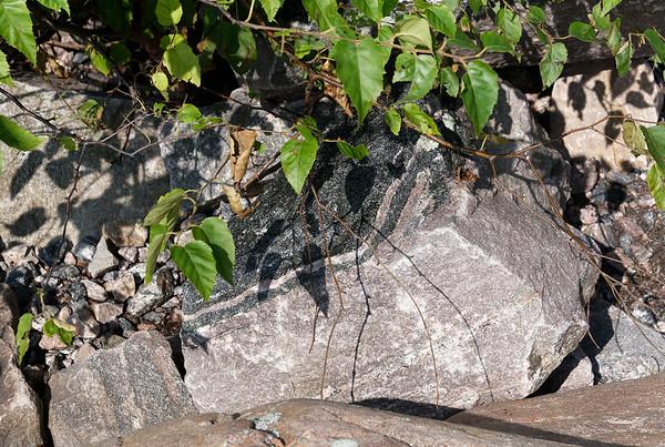 Killbear Park, two types of rock