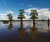 Lake Bigeaux
