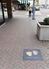 Memphis TN – Peabody Hotel duck walk