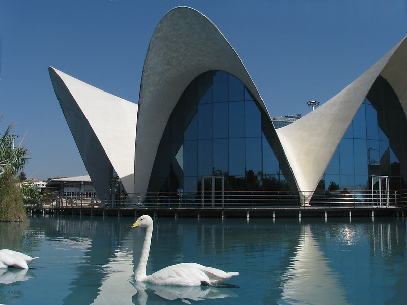 Oceanographic  -  Valencia  -  Spain