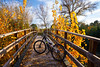Autumn sunset bike on bridge Parque de Turia