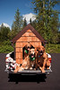 Doggiestock doghouse pack-Molly, Winnie, Jake, Elwood, Tango-North Bend, WA 8-20-2010