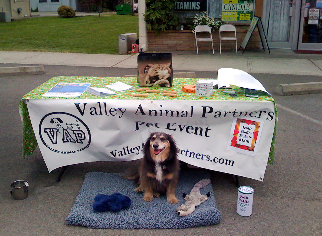 Elliot staffing the VAP booth @ Fall City Days, WA 6-2009