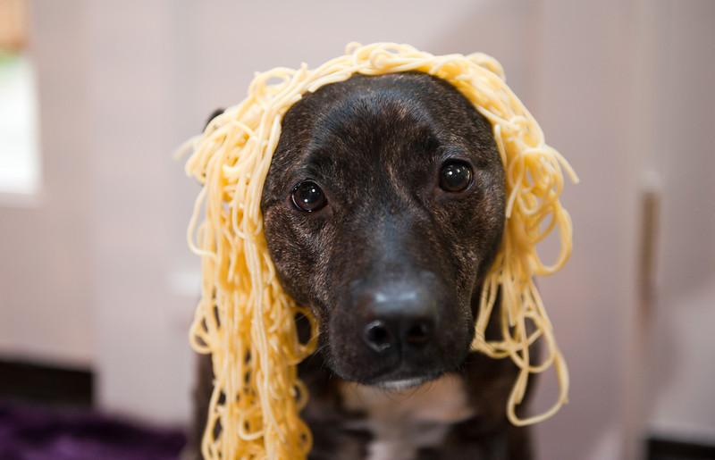 Karly in spaghetti 1-30-2012