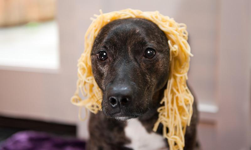 Karly Goldilocks-North Bend, WA 1-30-2012
