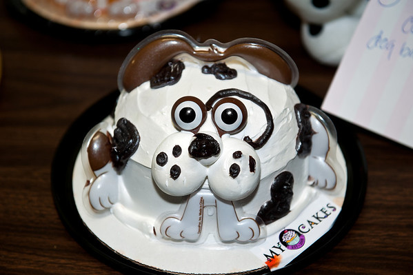 dog cake @ VAP dessert auction-Snoqualmie, WA 10-15-2011
