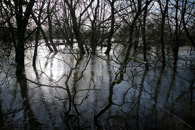 Floods_042