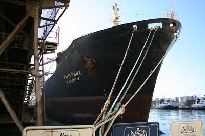 2008 - M/S KAMENITZA in Napoli.