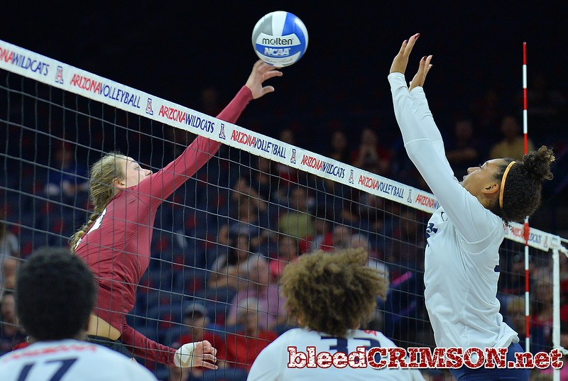 TUCSON, AZ - SEPTEMBER 15:  Lia Mosher #21 of the New Mexico State Aggies takes a swing in a match between the New Mexico State Aggies and the Arizona Wildcats at the McKale Center in Tucson, Arizona. The Wildcats won 3-2.  (Photo by Sam Wasson)