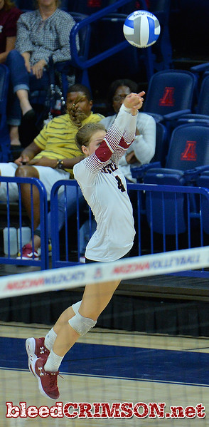 TUCSON, AZ - SEPTEMBER 15:  Ariadnne Sierra #4 of the New Mexico State Aggies digs a ball in a match between the New Mexico State Aggies and the Arizona Wildcats at the McKale Center in Tucson, Arizona. The Wildcats won 3-2.  (Photo by Sam Wasson)