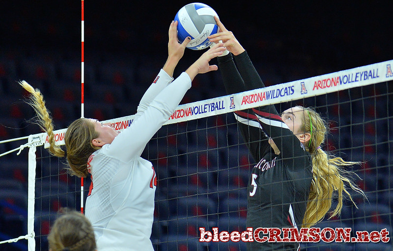 TUCSON, AZ - SEPTEMBER 16:  Brigette Lowe #5 of the New Mexico State Aggies and Lexi Wallen #14 of the Illinois State Redbirds joust at the net in a match between the New Mexico State Aggies and the Illinois State Redbirds at the McKale Center in Tucson, Arizona. The Redbirds won 3-0.  (Photo by Sam Wasson)