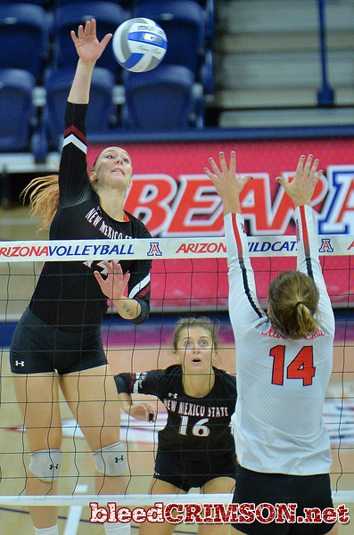 TUCSON, AZ - SEPTEMBER 16:  Kassandra Tohm #14 of the New Mexico State Aggies takes a swing against Lexi Wallen #14 of the Illinois State Redbirds in a match between the New Mexico State Aggies and the Illinois State Redbirds at the McKale Center in Tucson, Arizona. The Redbirds won 3-0.  (Photo by Sam Wasson)