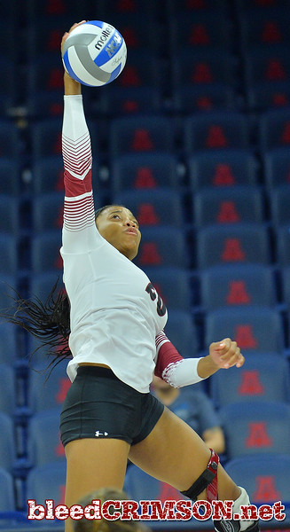TUCSON, AZ - SEPTEMBER 16:  Sasha-Lee Thomas #20 of the New Mexico State Aggies takes a swing in a match between the New Mexico State Aggies and the William & Mary Tribe at the McKale Center in Tucson, Arizona. The Aggies won 3-0.  (Photo by Sam Wasson)