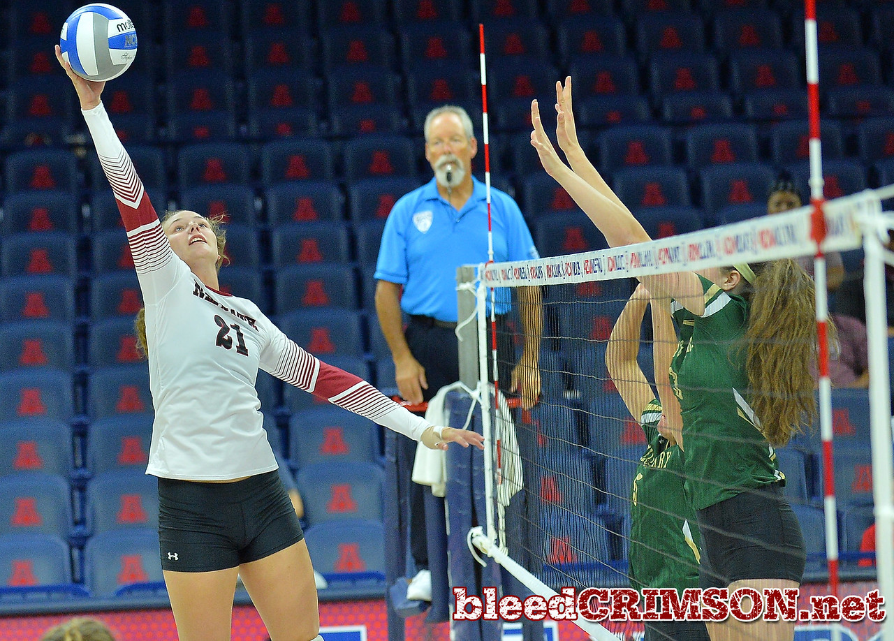 TUCSON, AZ - SEPTEMBER 16:  Lia Mosher #21 of the New Mexico State Aggies tries to hit a set off the net in a match between the New Mexico State Aggies and the William & Mary Tribe at the McKale Center in Tucson, Arizona. The Aggies won 3-0.  (Photo by Sam Wasson)