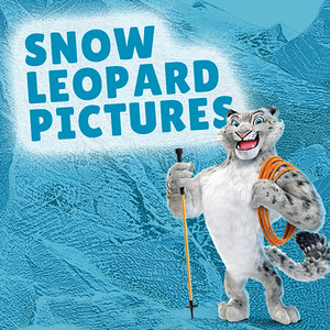 Day 1 Snow Leopards Group