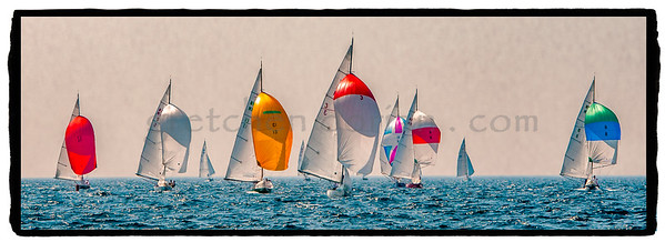 NM Sailboats
