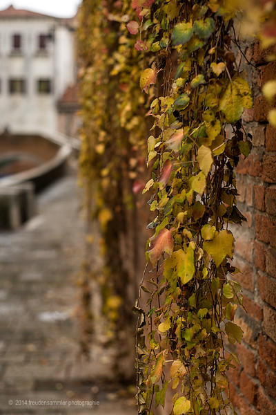 Autumn in Venice