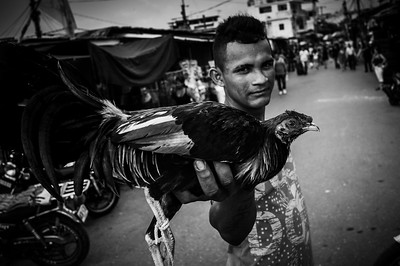 A man sells his fighting rooster to return with food to Venezuela. Puerto Santander, Colombia. Photo: Dany Krom.