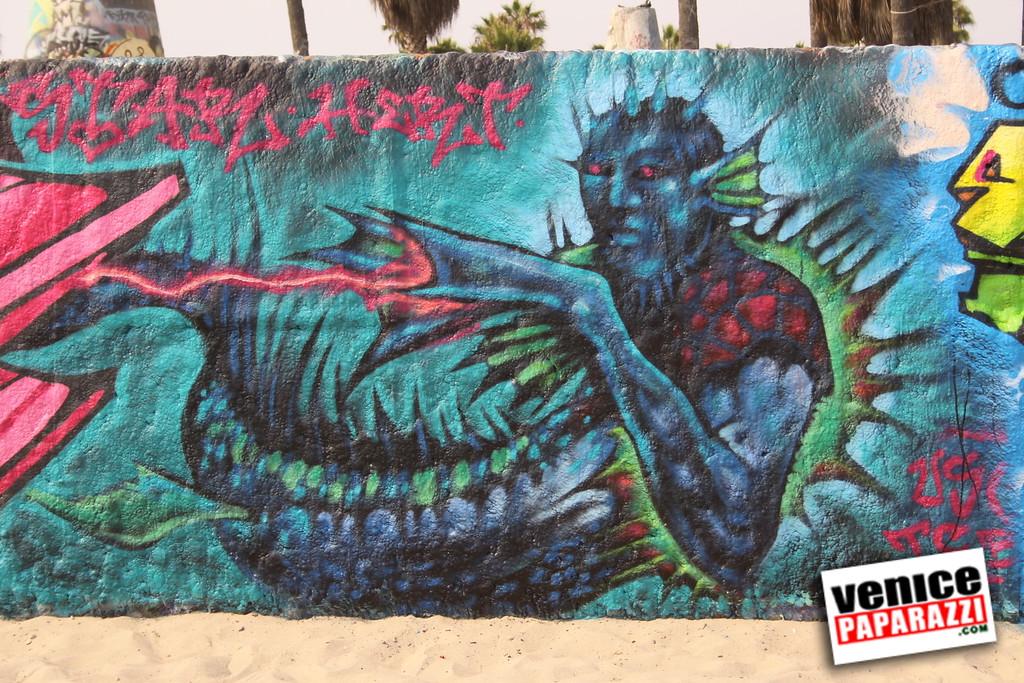09 01 09  Venice Public Art Walls, Tonan, Venice Skatepark, bike path and beautiful Toronto Women  (3)