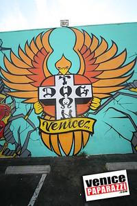 V S A  Venice Skate and Surf Association  10 27 08 (55)