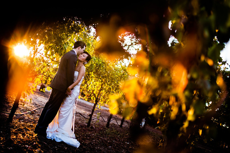 Jin and Mike's wedding at the St. Francis Winery in Santa Rosa, California