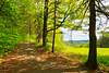 VT WOODSTOCK Marsh_Billings_Rockefeller National Historical Park MOUNT TOM ROAD MAYAF_MG_5012MMW