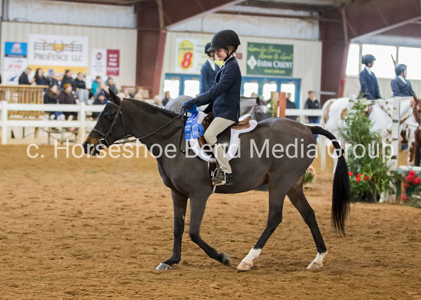 2019 VHSA Associates Championship Horse Show -- Sunday -- East Complex Morning Classes