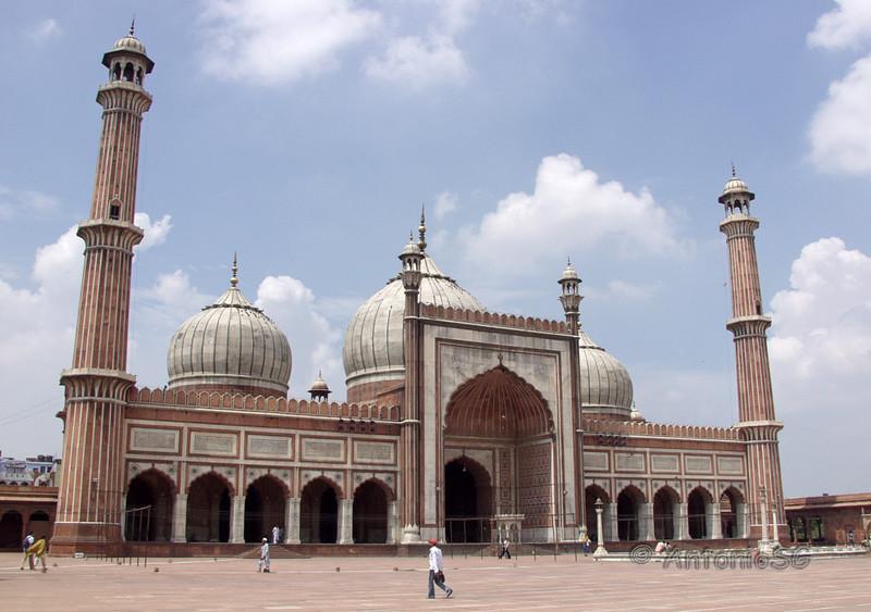 Mezquita Jamma Masjid, la mas grande de la India