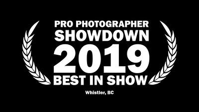 PRO PHOTOGRAPHER SHOWDOWN 2019 WINNING SLIDESHOW