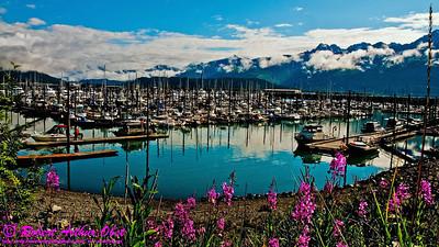 Obst Photos Nikon D300s Obst Adventure Travel Alaska Image 8757 or LISALS_8757_AK07-SewardAKTOAnchorage&DenaliParkAK.WildBeautyEncirclesGorgeousSewardBoatHarbor-B